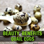 7 Beauty Benefits of Quail Eggs