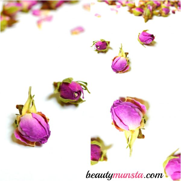 beauty benefits of rose petals