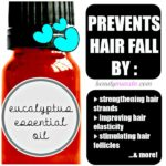 Eucalyptus Essential Oil for Hair Loss | Why it Works