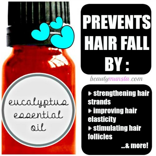 Eucalyptus essential oil stimulates the hair follicles, thereby promoting hair growth & reducing hair loss
