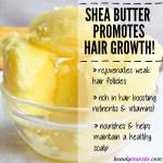 Longer & Stronger: Shea Butter for Hair Growth