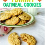 Easy Vegan Oatmeal Cookie Recipe