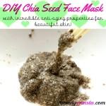 DIY Anti-Aging Chia Seed Face Mask for Beautiful Skin