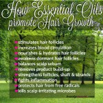 10 Benefits of Essential Oils for Hair Growth | How they Work