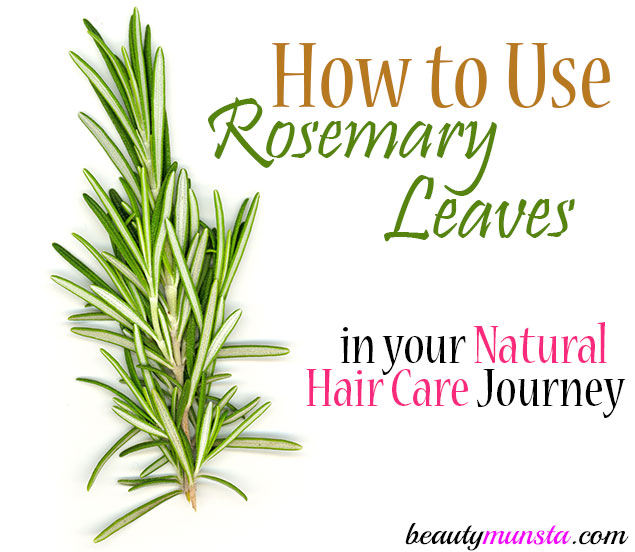 rosemary leaves for hair