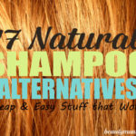 17 Natural Shampoo Alternatives for the Crunchy at Heart