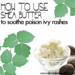 Shea Butter for Poison Ivy / Oak / Sumac | Quick Skin Soother