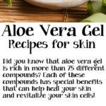 3 DIY Aloe Vera Gel Recipes for Skin