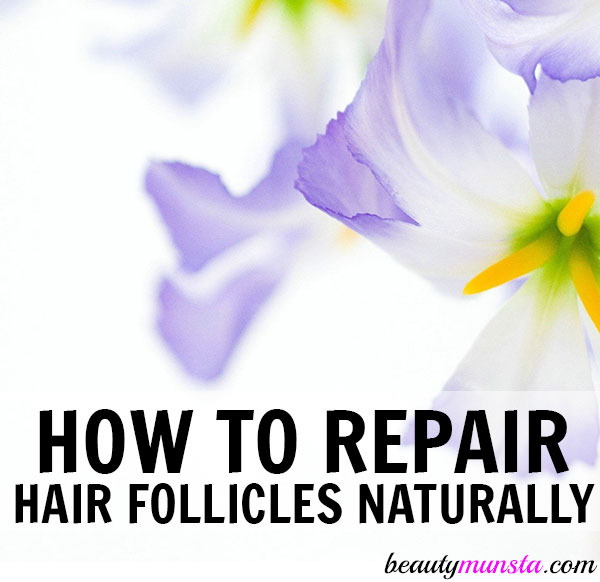how to repair hair follicles naturally