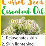 9 Beauty Benefits of Carrot Seed Essential Oil for Skin & Hair