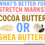 Is Shea Butter Better than Cocoa Butter for Stretch Marks?