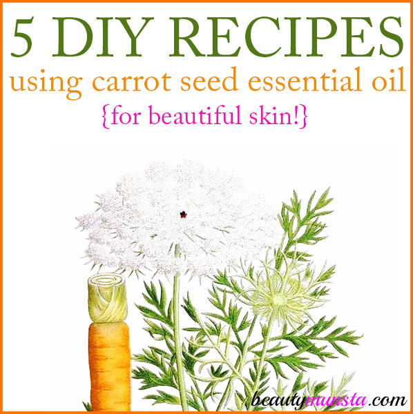 Discover 5 DIY carrot seed essential oil recipes for skin!