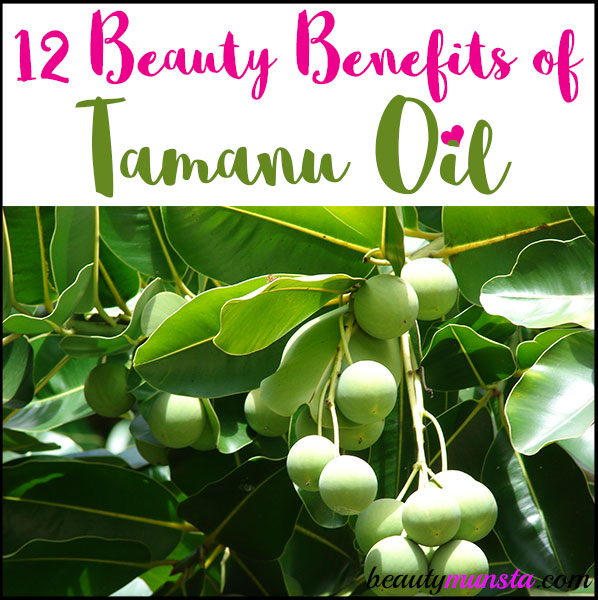 Find out 12 beauty benefits of tamanu oil for skin and hair in this post!