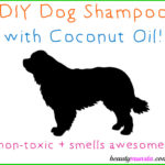 DIY Coconut Oil Shampoo for Dogs