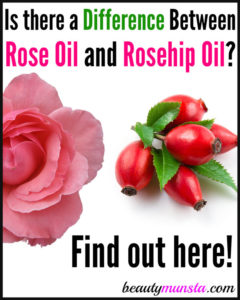 Is there a Difference between Rose Oil and Rosehip Oil?