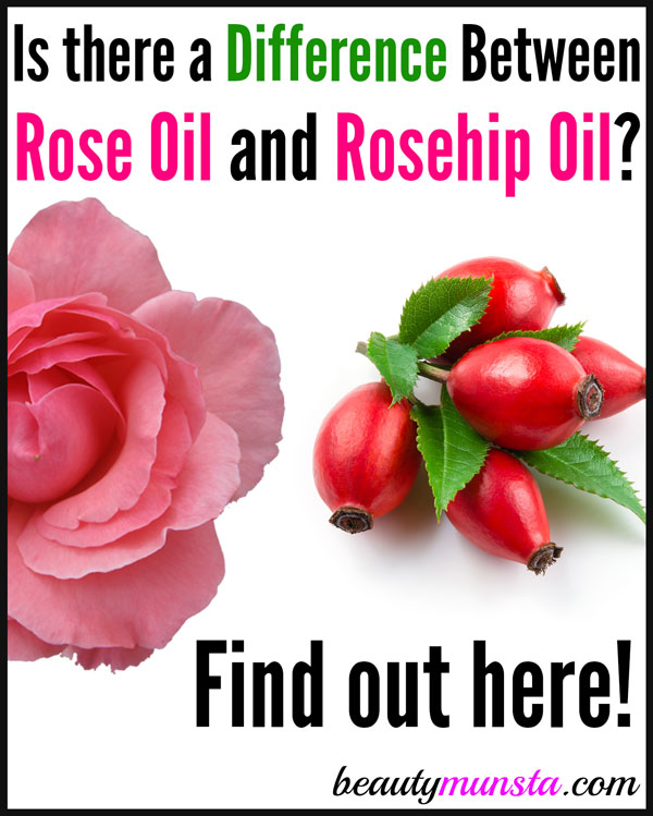 Is there a difference between rose oil and rosehip oil? Let's find out!