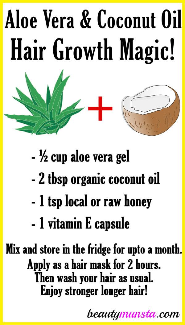 Aloe Vera And Coconut Oil For Hair Growth Beautymunsta
