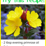 Evening Primrose Oil for Skin Lightening