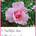 13 Beauty Benefits of Rose Essential Oil