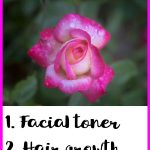 15 Beauty Benefits of Rose Water
