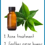 14 Terrific Tea Tree Oil Uses for Skin
