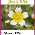 12 Beauty Benefits of Meadowfoam Seed Oil for Skin, Hair & More