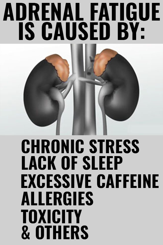 ADRENAL FATIGUE CAUSES