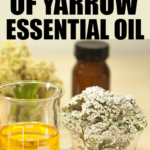 Top 6 Beauty Benefits of Yarrow Essential Oil