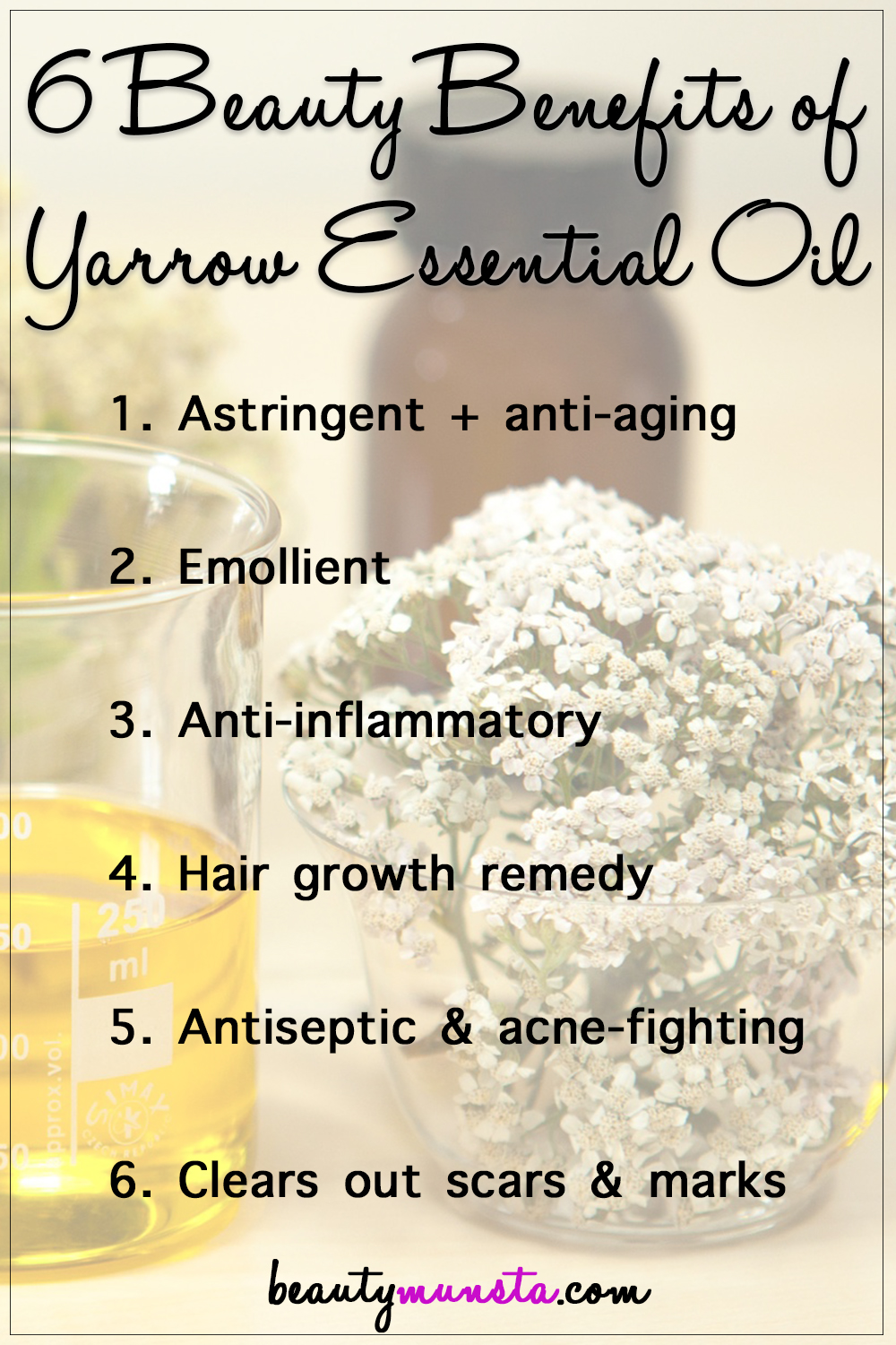 Have you heard about the florally captivating yarrow? There are so many beauty benefits of yarrow essential oil that you should know about!